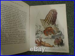 Popular History of the Aquarium of Marine and Fresh-Water Animals and Plants
